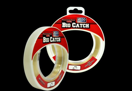 big-catch-SITE_640